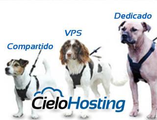 la diferencia servidor compartido vps y dedicado